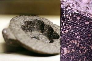 Передовые технологии 5000 лет назад (2)